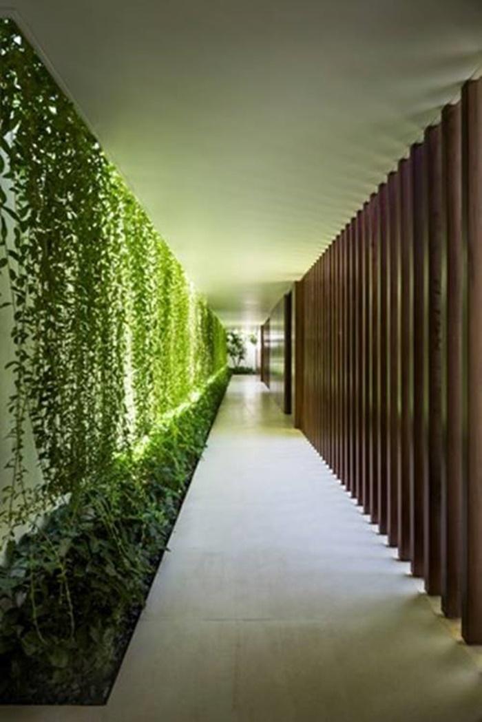 xem mẫu nhà vườn 1 tầng
