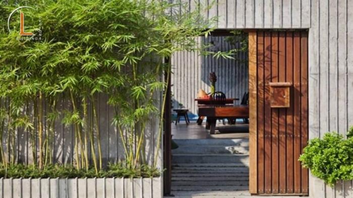 hàng rào cây xanh trước nhà